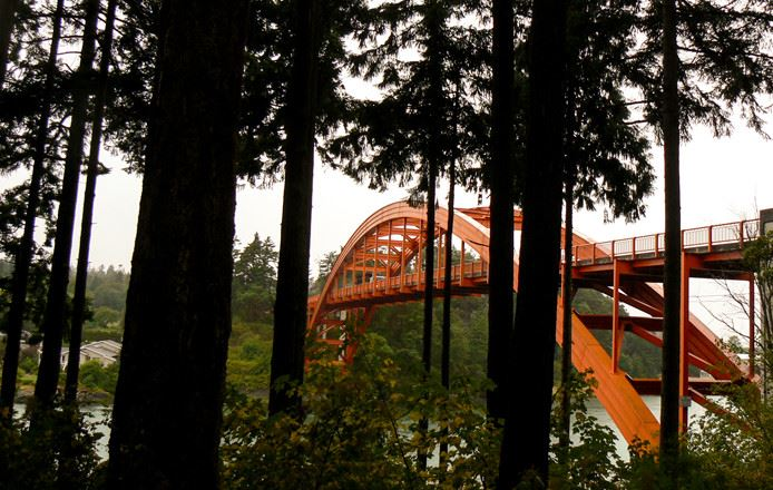 A red metal bridge over a river in a thickly forested area